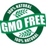 GMO free - 100% natural