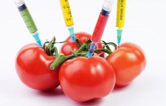 Jak sprawdzić, czy produkt jest GMO?
