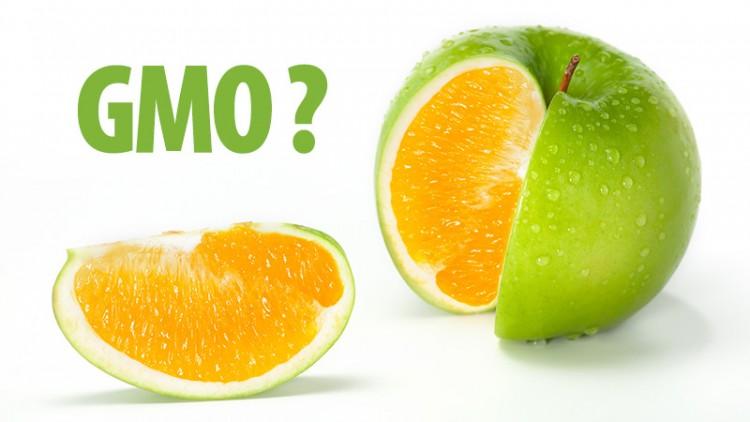 Czy GMO tozło?