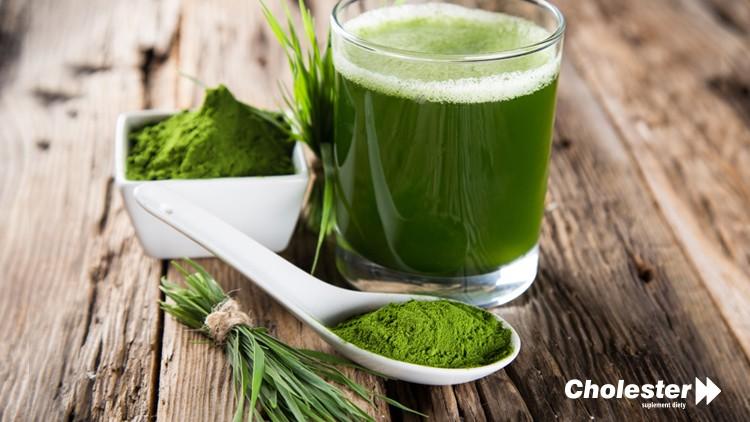 Chlorella – zielona moc oczyszczania